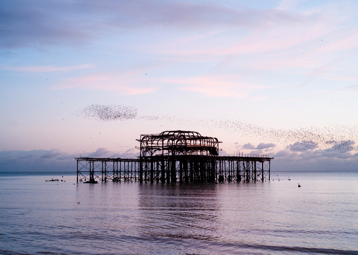 Favourite things in Brighton and Hove
